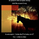 EEH and Spirit's Promise Equine Rescue poster