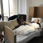 Mini Horses visit Patient at the kanas Center for Hospice Care